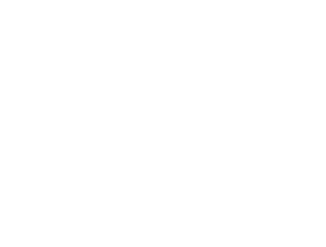 Cats Going Places logo