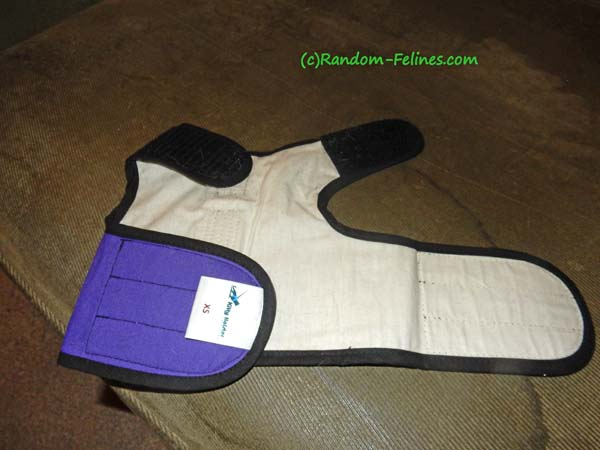 kitty holster not worn