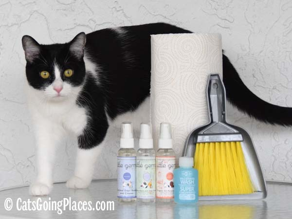 black and white tuxedo cat stands beside cleaning supplies