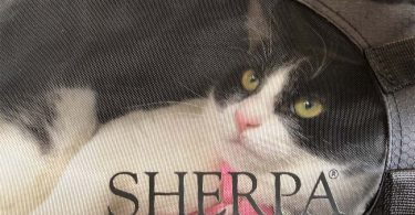 black and white tuxedo cat looks out of window of Sherpa comfort ride carrier