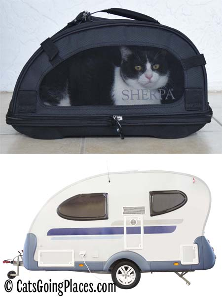black and white tuxedo cat in Sherpa comfort ride carrier and similar shaped caravan camper trailer