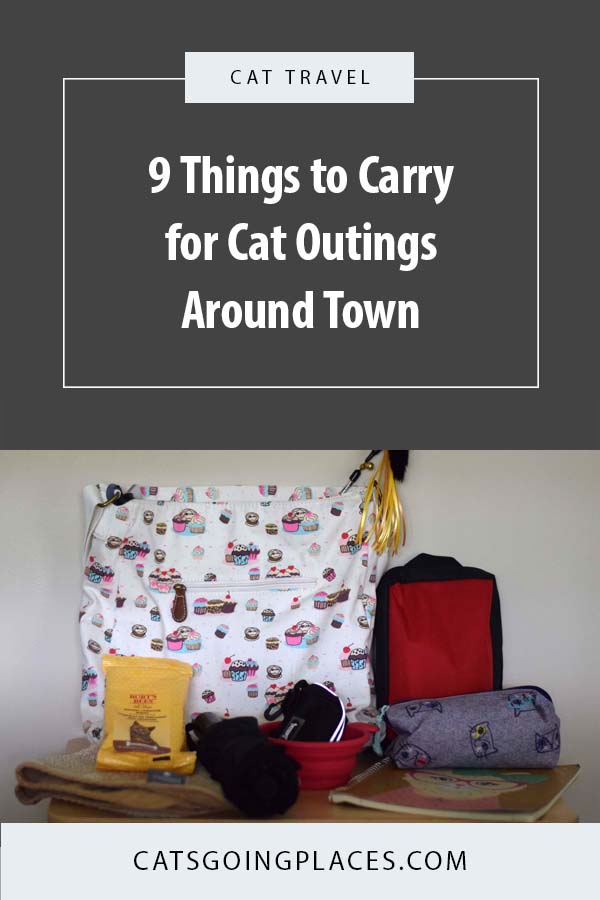 9 Things to Carry for Cat Outings Around Town -- Your cat's carry bag includes all the things you might need for a day of fun on the town. We have a list of the things you may want to make sure you carry in your bag to be prepared for nearly any situation. #cats #travel
