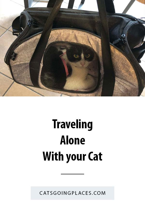 Traveling Alone with Your Cat #travel #cats