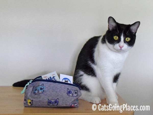 black and white tuxedo cat and pencil case