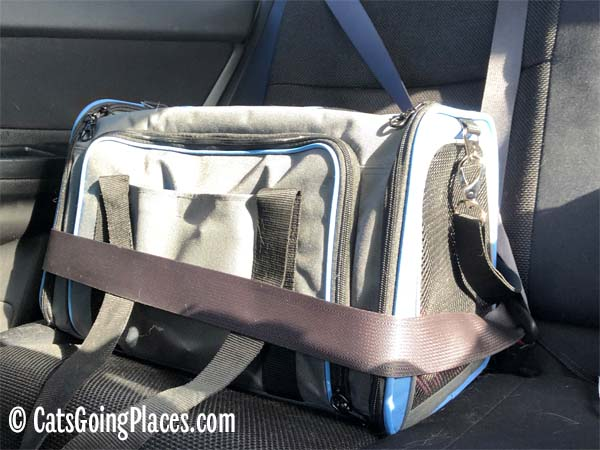 Jackson Galaxy extendable pet carrier strapped into car with seat belt