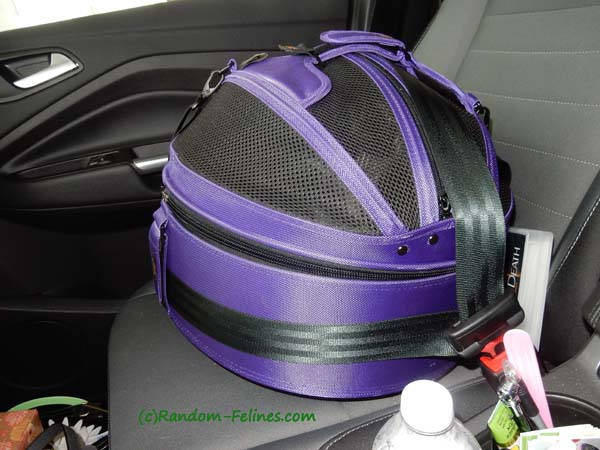 purple sleepypod strapped into back seat