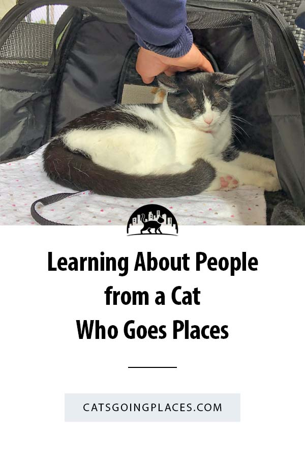 You can learn a lot about people from the encounters you have with them when you adventure together. #catsgoingplaces #catonaleash #adventurecats #adventurecat #humananimalbond