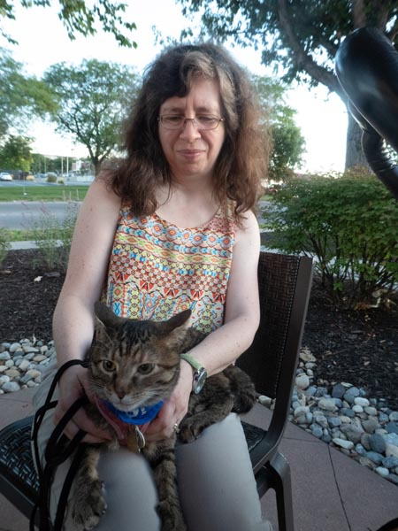 tabby cat sits on woman's lap